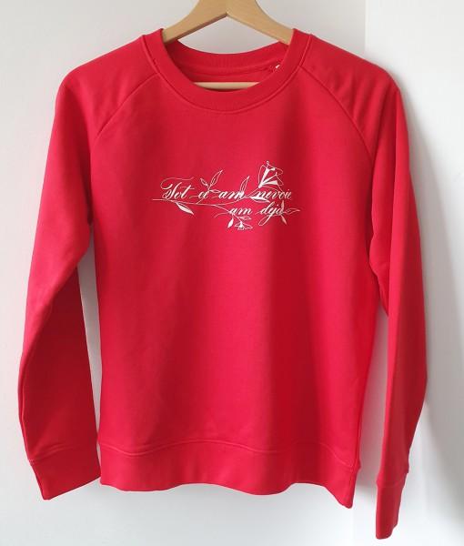 pulover-rosu-Tot-ce-am-nevoie-intreg