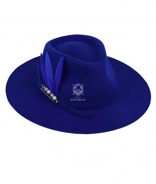 D71-albastru-pene-ac-principala-logo